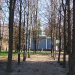 Останній погляд на джерело музейної справи в Україні