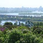 Краєвид із сирингарію Ботанічного саду