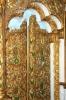 Свято-Михайлівська церква, img_2008fc