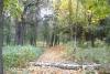 Тальнівський парк, img_3282fc