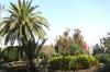 на території францисканського монастиря, img_0959fc