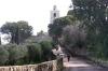 алея до православного монастиря, ts-img_7344fc