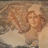 фрагмент мозаїчної підлоги, 1-dsc00629fcp