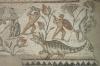 фрагмент мозаїчної підлоги, img_1139fcp