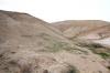 Юдейська пустеля, img_1671fc