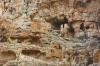 схил ущелини, ts-img_8789fc