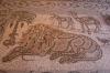 мозаїка на підлозі, 1-dsc00967fc