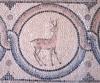 мозаїка на підлозі, img_1505fc