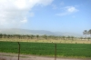 Йорданська долина - 32 км, img_1428fc
