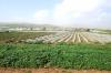 Йорданська долина - 42 км, img_1432fc