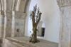 образ оливного дерева, img_1889fc