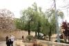 біля храму Успіння Пр. Богородиці, img_1936fc