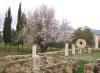 залишки древнього храму, 1-dsc01308fc