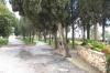 на території монастиря, img_1959fc