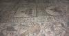 мозаїки підлоги, ts-img_0548fc