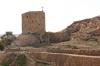 жіноча башта, ts-img_9822fc