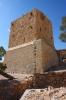 жіноча башта, ts-img_9871fc
