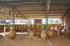 археологічна експозиція, ts-img_9763fc