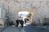 Сміттєві ворота, img_2371fc