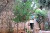 на території монастиря, img_2967fc