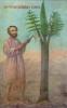 дерево рубають для будівництва храму,  img_3002fcp4
