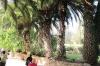 подвір'я монастиря, img_3090fc