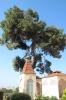 на території монастиря, img_3181fc