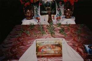 Проща до Ніжина, маленьке чудо. Рослинки (один з видів коланхое) якими була прикрашена плащаниця перед Пасхою, вони не в'яли та росли прямо на столі декілька місяців  2004р.